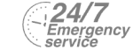 24/7 Emergency Service Pest Control in Tufnell Park, N19. Call Now! 020 8166 9746